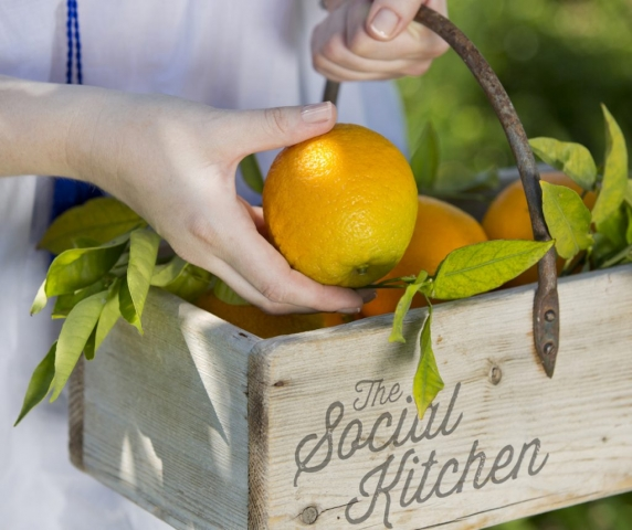 Picking Oranges, The Social Kitchen, food photos, Seville Oranges Fresh, Off the tree,