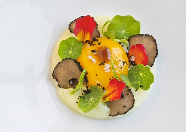 Vistas Restaurant, Monte Rei Golf & Country Club, Egg dish with flowers and truffles,