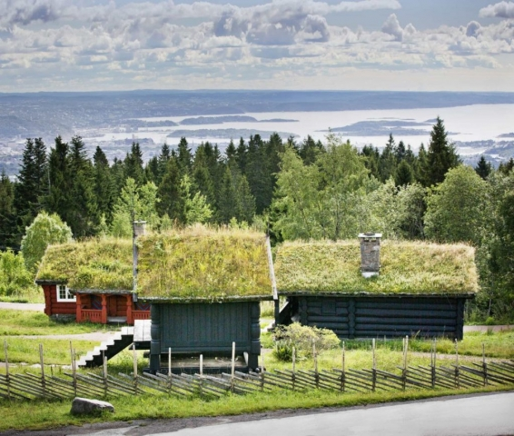 Oslo, Norway, lawn roof, grass on the roof, house in Norway, Sunny Norway