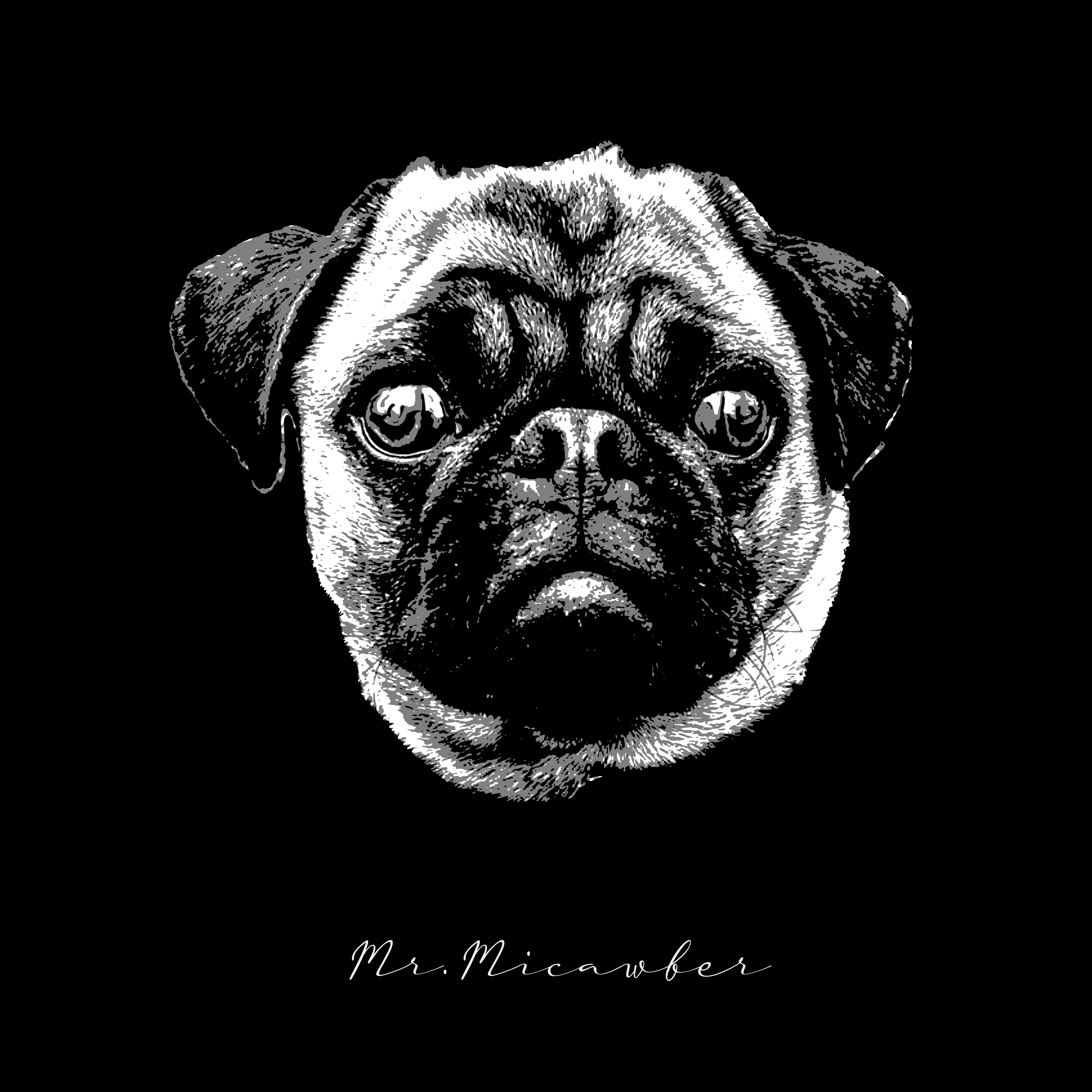 Pug head art with Signature Portrait effect added, Mr. Micawber Marbella