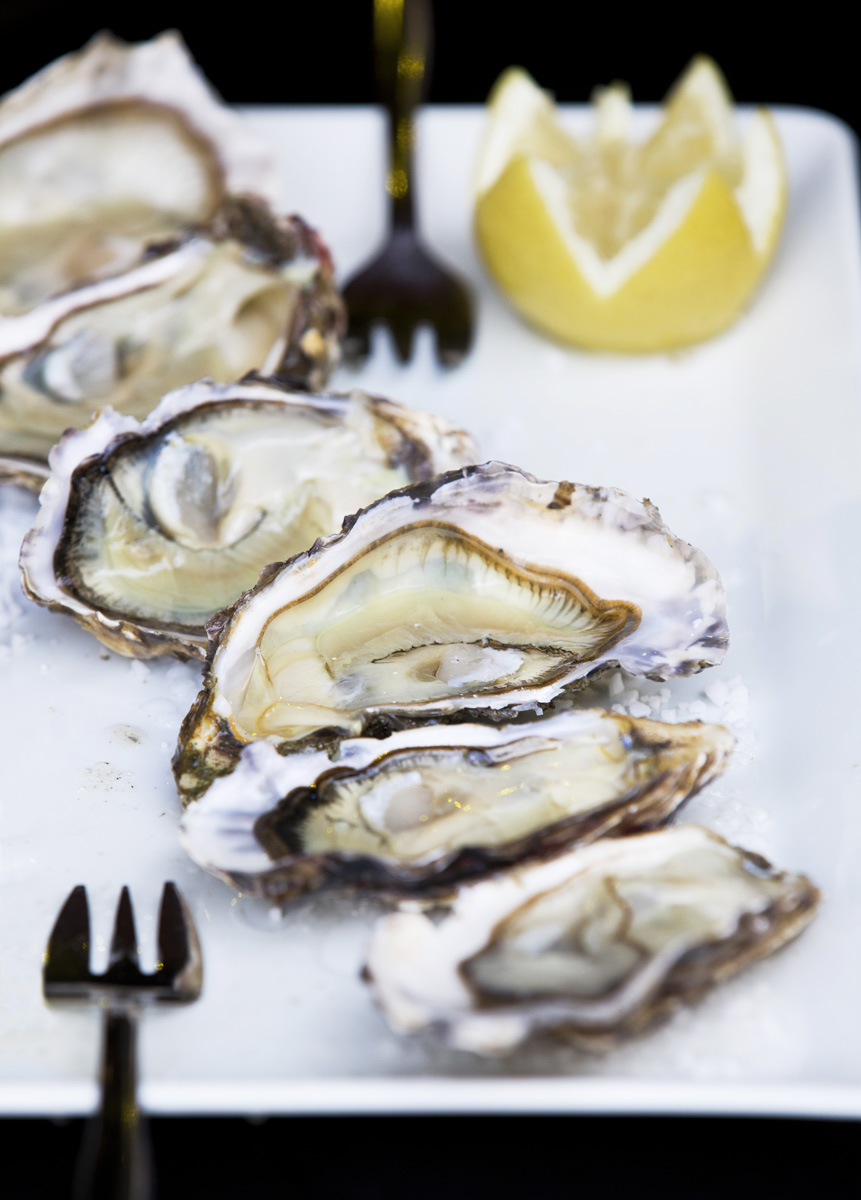 Fresh Oysters, Bordeaux, Food photography