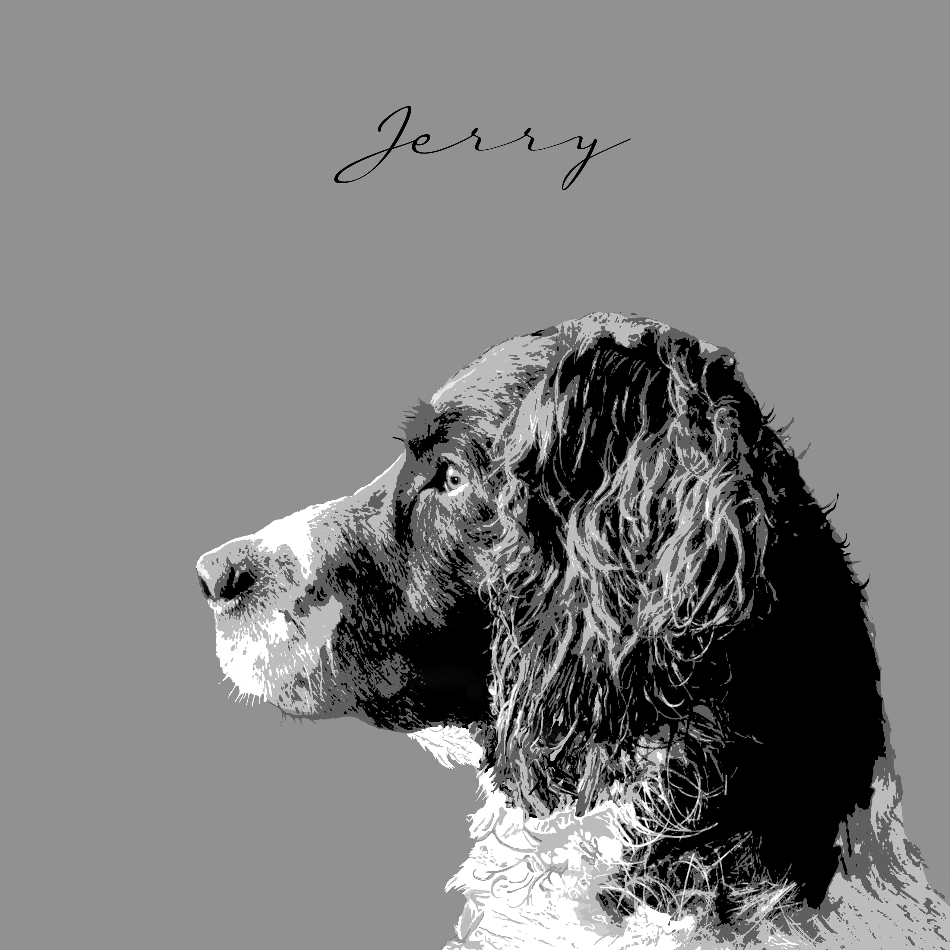 Jerry - Mock up of pet portraits