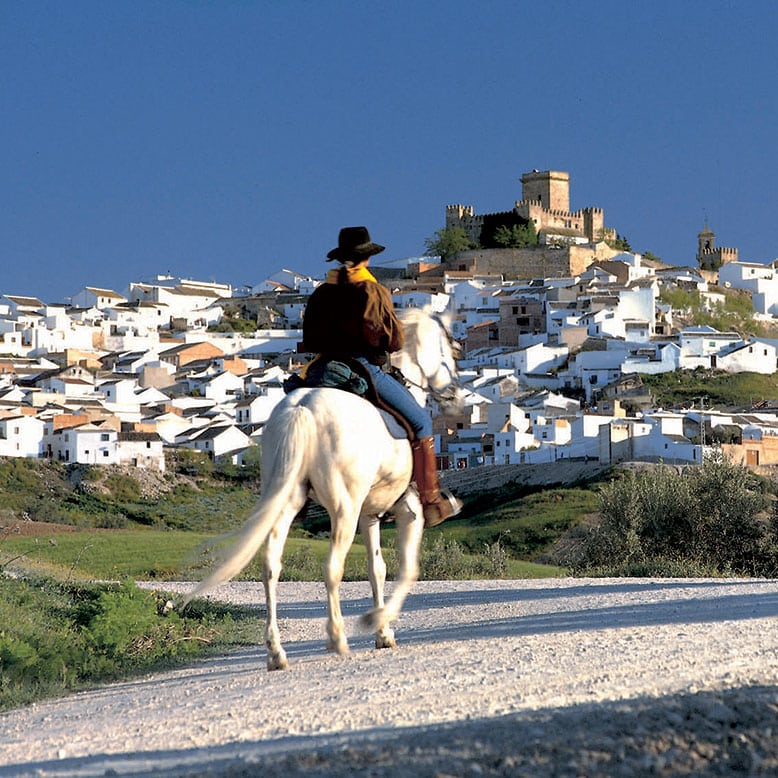 Espejo, Horse riding,  Andalucia, SPAIN, Andalusia, horseback, traditional spain, white horse, castillo en España, a castle in Spain
